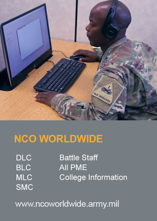 Soldier taking an online course